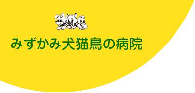 犬、猫からエキゾチックアニマルまでを診療します。東林間(神奈川県相模原市)の動物病院は水上犬猫鳥病院