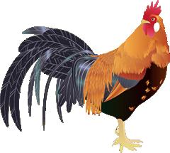 高病原性鳥インフルエンザについて